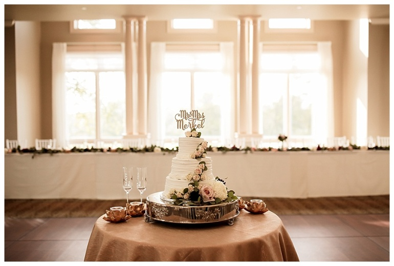 hawthorns-country-club-reception-wedding-photography-indianapolis-cake